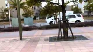 Extraño fenómeno en Japón antes del terremoto