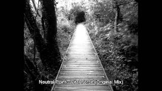 Neutral Point - Vital Force (Original Mix) (320 kb/s)