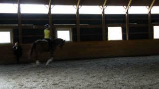 Felix - Canter (Jodi Pearson- Keating lesson) 4-27-2013