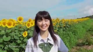 2017年初夏放送予定のスペシャルTVドラマ「セブンティーン、北杜 夏」の...