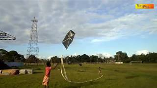 Make A Bamboo Kite