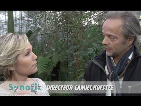 Ontstaan van Synofit: Camiel Hofstee en René den Admirant