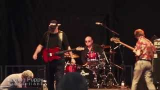 Jerry Doucette - Sweet Home Chicago - Live Jam.