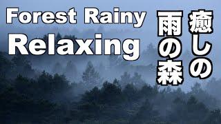 癒しの雨の森 Forest Rainy Piano & Rain Sounds Relaxing 癒しの音楽 リラックス 音楽 自然の音 リラクゼーション 梅雨 Healing sound Sleep