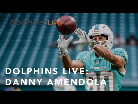 Danny Amendola is doing everything in his power to succeed | Miami Dolphins