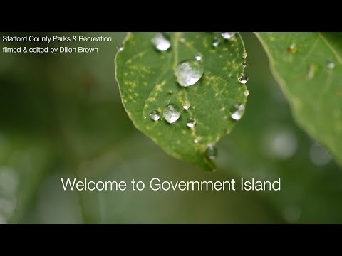 Government Island Park Tour
