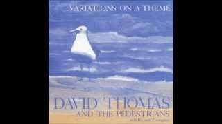 Pedestrian Walk - David Thomas And The Pedestrians