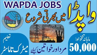 WAPDA Jobs 2020, Lecturer Jobs 2020, Teachers Jobs 2020, WAPDA Jobs, Jobs in WAPDA, Govt Jobs 2020