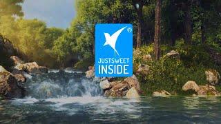JustSweet Natural Prebiotic Sweetener