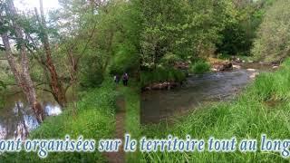 Sincey-lès-Rouvray / Montberthault en Cote d'Or (21)