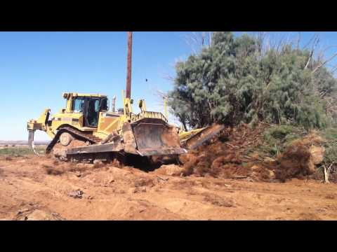 Bulldozer clearing trees and brush 1