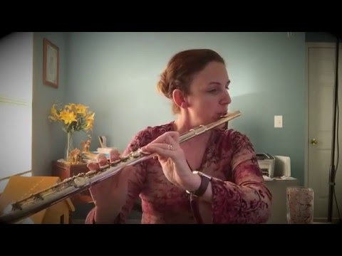 Chasing Pavements - Adele - Serendipity on Flute Cover (live recording)