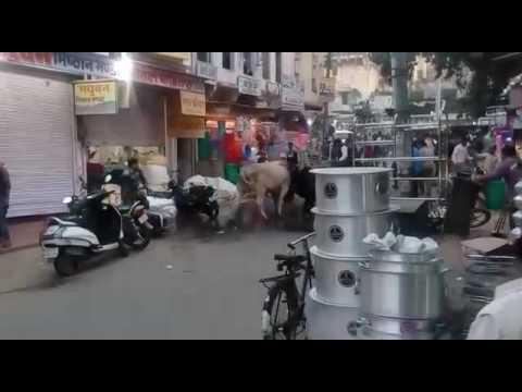 warcraft movie in hindi download 300mb