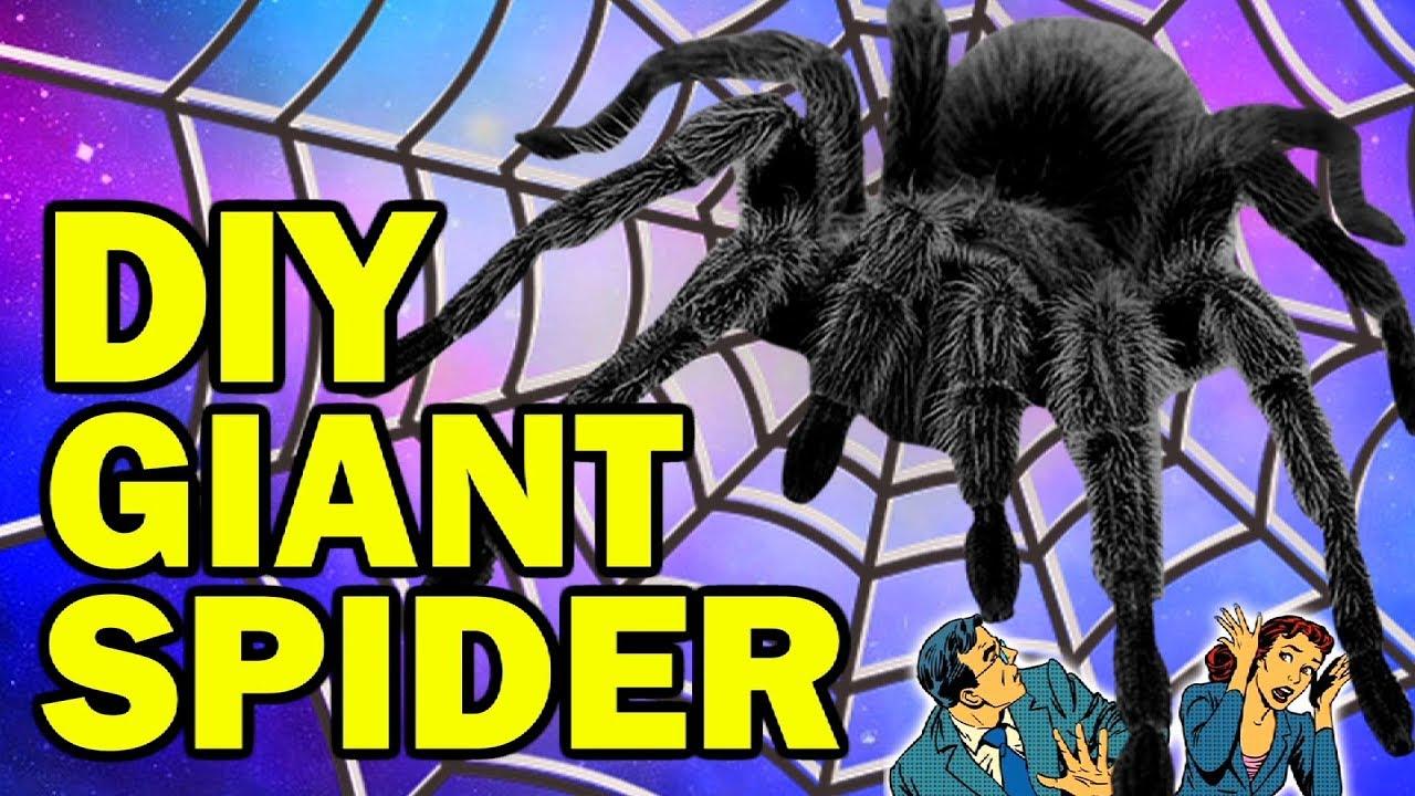 diy giant spider aka aragog aka harry potter halloween bit*hes