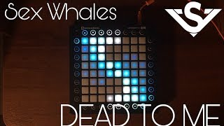 Sex Whales &amp Fraxo - Dead to Me (ft. Lox Chatterbox) Launchpad Pro Cover(By Asc11)