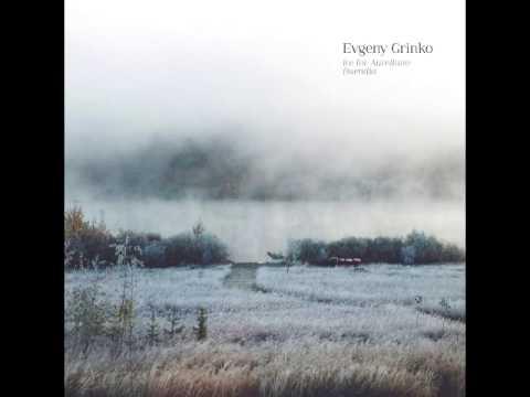 Evgeny Grinko - Valse (Album Version)