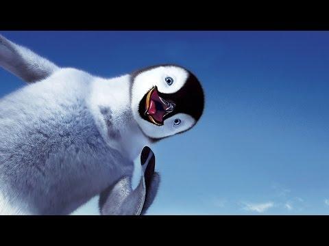 Видео про пингвинов —