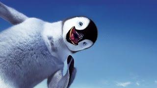 Смешные пингвины | Funny penguins | Подборка приколов