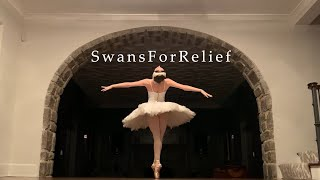 Swans For Relief Teaser