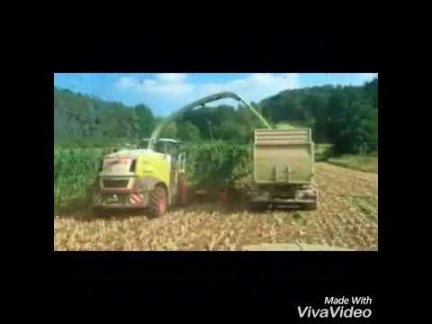 Ich und mein Mais Song