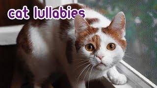 EXTRA-LONG CAT MUSIC - Relaxing Cat Lullabies!