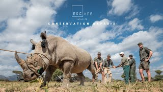 Marataba Rhino Conservation