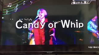 Candy or Whip - 創造者