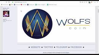 WOLFS GROUP-IEO Running in P2PB2B and Coinsbit|3 Million Tokens Bounty Rewards Worth $75000