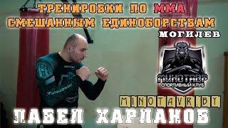 Тренировки по ММА в Могилеве (смешанные единоборства)