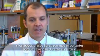 asea frontiers metabolitos español spanish