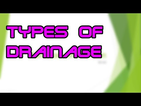 Types of Wound Drainage