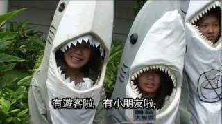 Say NO to shark fin Freezemob 2