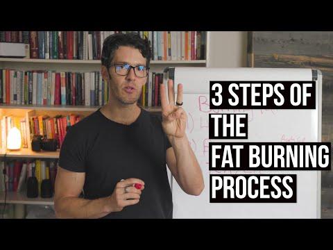 Fat Burning Beyond Just Calories Deficits | Part 3