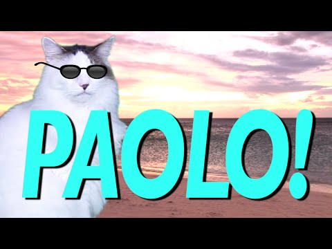 HAPPY BIRTHDAY PAOLO! EPIC CAT Happy Birthday Song YouTube