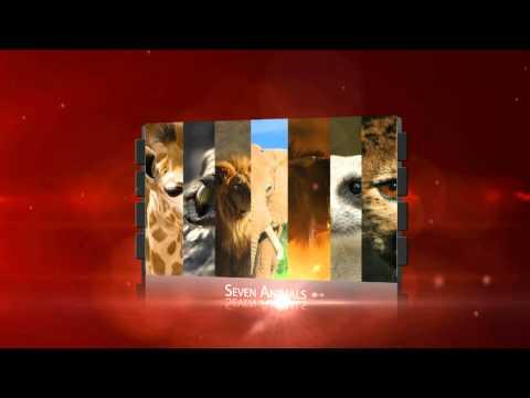Surviving Your Serengeti - 60 Second Trailer