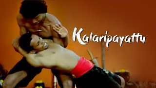 Kalaripayattu - Fighting without weapons