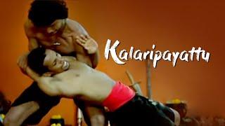 Kalaripayattu - Fighting without weapons