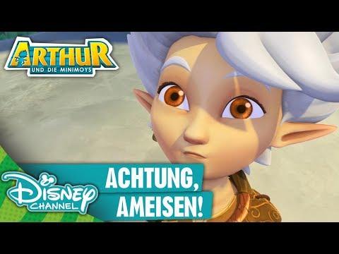 Arthur Und Die Minimoys Clip Achtung Ameisen Disney Channel Youtube