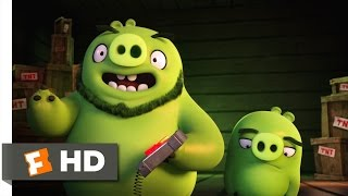 Angry Birds - The Pigs Arrive Scene (3/10) | Movieclips