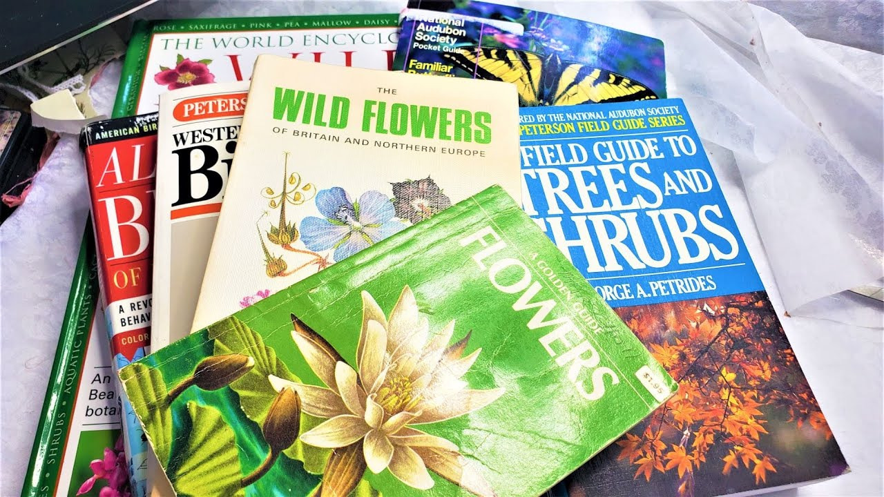 Junk Journal How and Where to Find Field Guides for Junk Journals! Take a Peek! :) The Paper Outpost