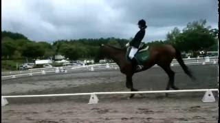 第 31 回サマーホースショー、馬場馬術 A2 課目 2013 50.882% C: 50.000...