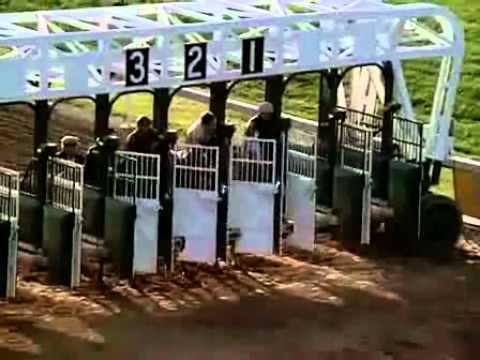 Trailer do filme Cavalo Negro