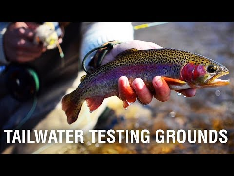 TAILWATER TESTING GROUNDS | A White River Flyfishing Film