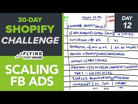 6-Figure Shopify Store With FB Ads: Profitable Scaling Strategy - (Day 12/30) #Bizathon3