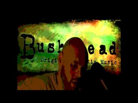 To Make You Feel My Love cover by Bushyhead