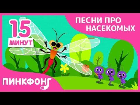 Лучшие Песни про Насекомых | Песни про насекомых | +Сборник | Пинкфонг песни для детей