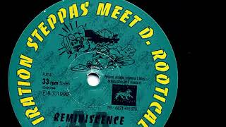 Iration Steppas meet D  Rootical  - Reminiscence Retrospection Mix
