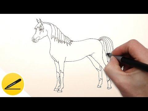 Как нарисовать легко лошадь