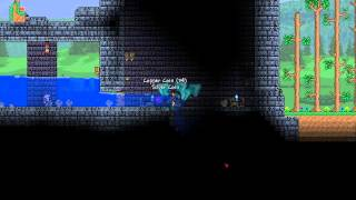 [terraria] - Ice Chest Unboxing