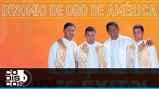 Download Grandes Éxitos, Binomio De Oro De América - Audio